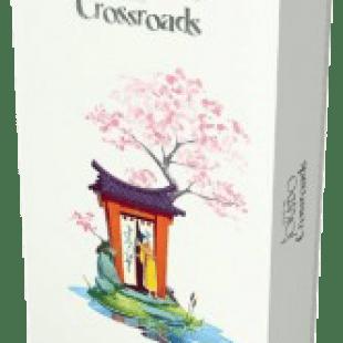 Le test de Tokaïdo – Crossroads