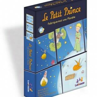 Le test de Le Petit Prince : Fabrique-moi une planète