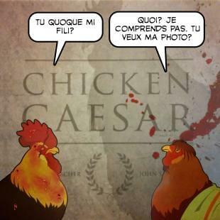Chicken Caesar: moripoulet te salutant!
