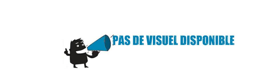 PAS-DE-VISUEL-DISPO1