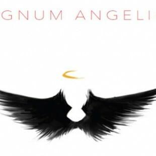 Regnum Angelica : la surprise de la BGG.CON