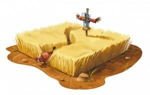 Regardez-moi ces champs de blé aux accents de trésors
