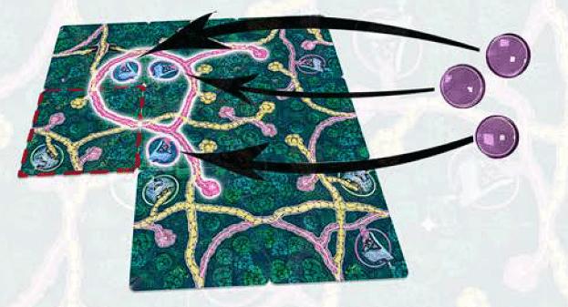 Fairy trails jeu matériel dos de boite image