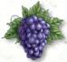 hs_wine