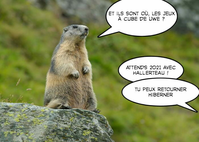 Marmottes-des-alpes-HEADERR-picsay