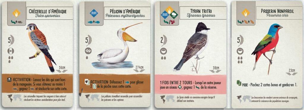 Pouvoir oiseaux