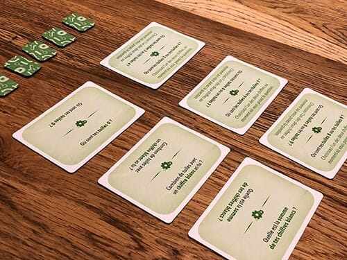 break-the-code-jeu-ludovox-cartes