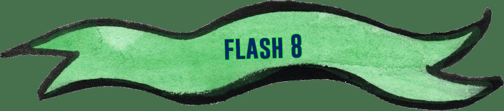 flash-8--jeu-de-societe