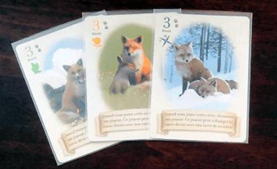 renard-des-bois-duo-jeu-cartes-ludovox