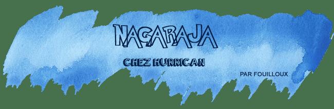 retour-salon-nom-des-jeux-Nagraja