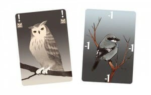 songbirds-cartes-promo