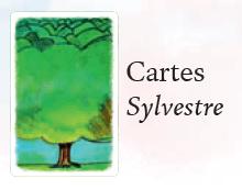 sylvestre-1