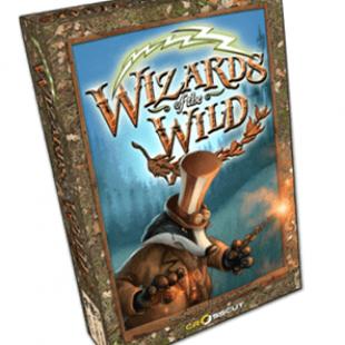 Wizards of the Wild : dernières heures sur KS maintenant !
