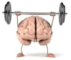 cerveau-muscle