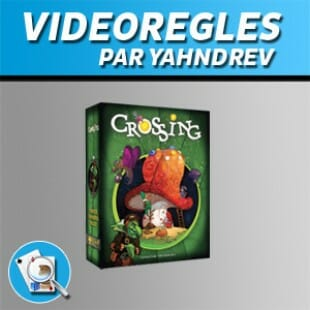 Vidéorègles – Crossing