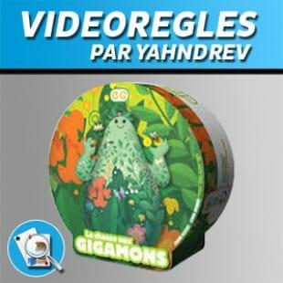 Vidéorègles – La chasse aux gigamons