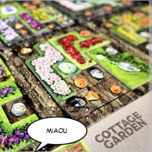 Des chats et des pots [Cottage Garden ]