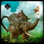 Curiosity-Bombyx-Materiel 2-Jeu de societe-ludovox