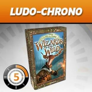 LUDOCHRONO – Wizards of the wild