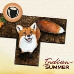 Indian Summer-Couv-Jeu-de-societe-ludovox