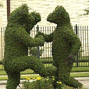 Cov Topiary copie