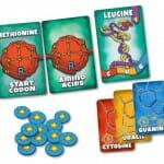Peptide A Protein Building Game-Materiel-Jeu-de-societe-ludovox