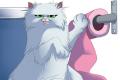 Cat'astrophes sort bientôt ses griffes