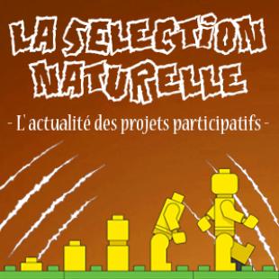 Participatif, la sélection naturelle du lundi 1er octobre 2018