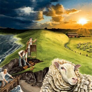 Les Basses Terres – Les moutons ne savent pas nager