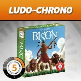 LUDOCHRONO – Bison