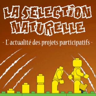 Participatif, la sélection naturelle N° 147 du lundi 27 juillet 2020