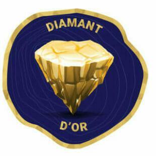 Diamant d'or, zoom sur la sélection 2021