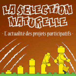 Participatif, la sélection naturelle N° 168 du 19 avril 2021