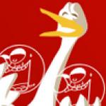 Photo du profil de tvincent